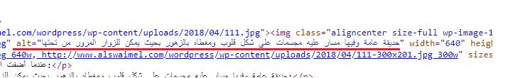 طريقة عرض كود النص البديل للصورة المضافة في التدوينة